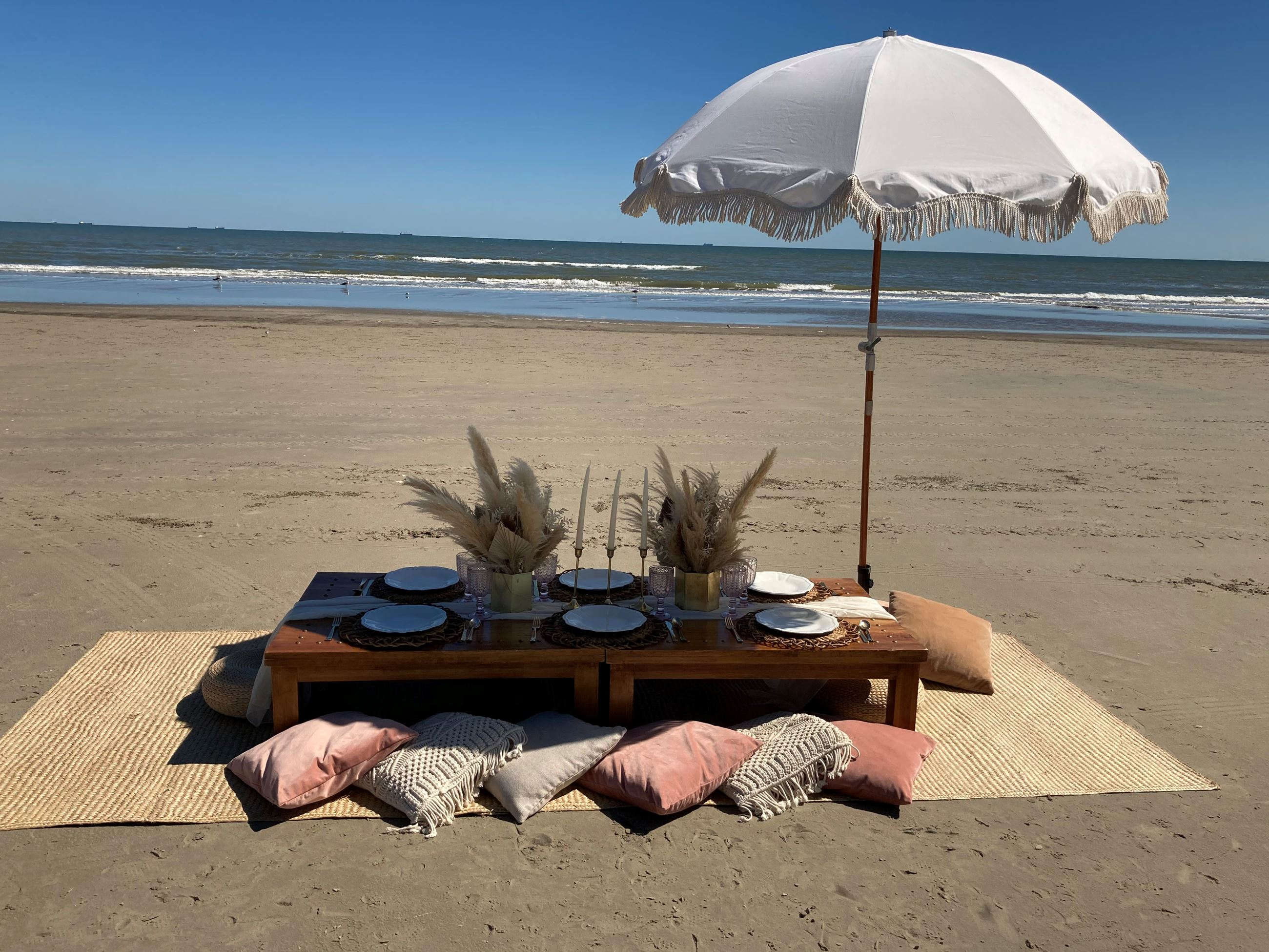 Chic Beach Picnic