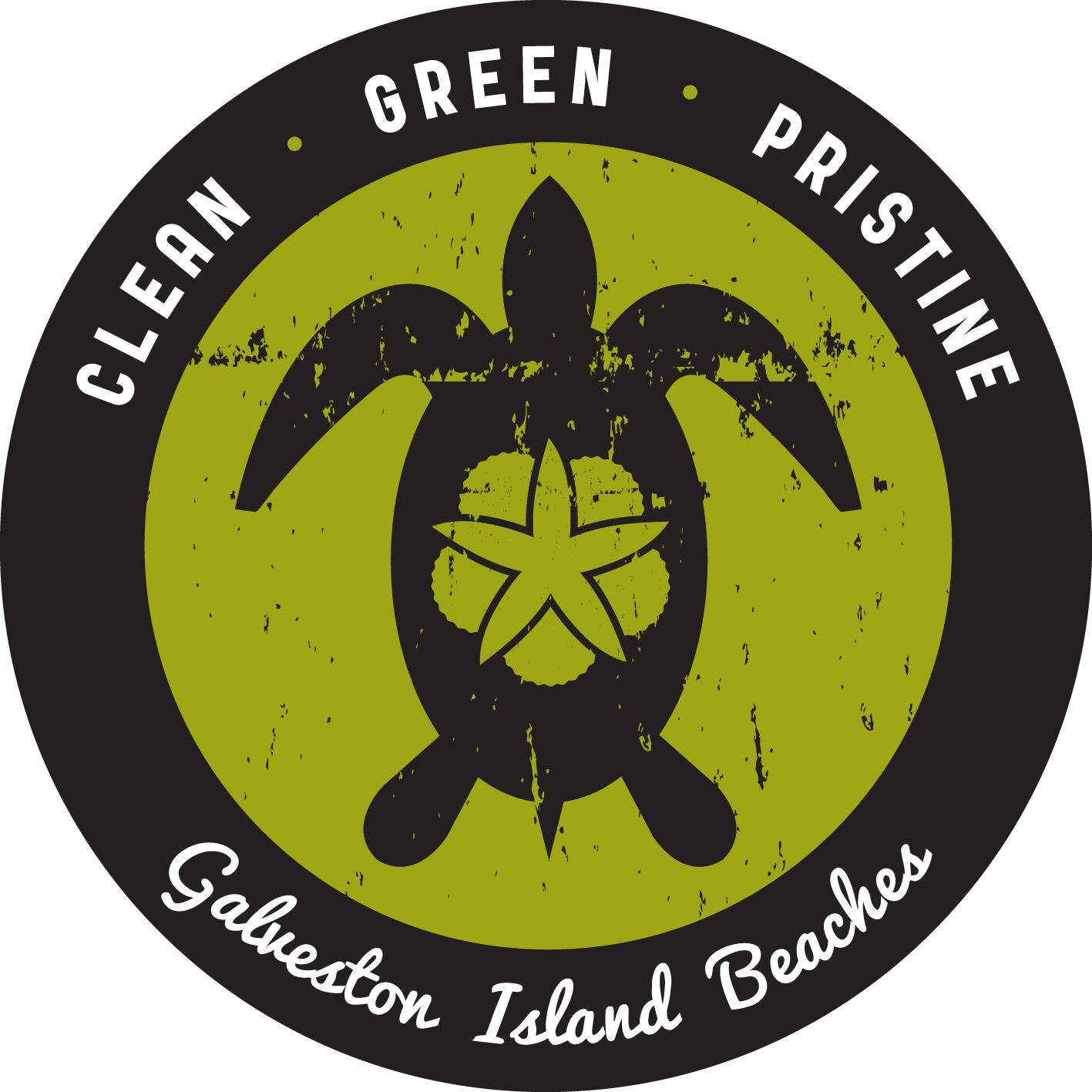 Green Turtle Logo